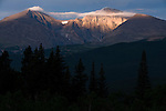 early, morning, sky; color; Mount Meeker; Longs Peak; Mount Lady Washington; forest; trees, Rocky Mountains; Colorado; USA
