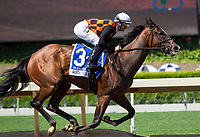 ARCADIA, CA APRIL 8: #4 Abel Tasman ridden by Mike Smith wins the Santa Anita Oaks (Grade 1) on April 8, 2017 at Santa Anita Park in Arcadia, CA.Photo by Casey Phillips/Eclipse Sportswire/Getty Images)