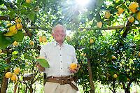 Italy - Amalfi Coast - IGP Lemons