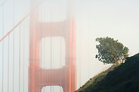 California, San Francisco Bay, Golden Gate Bridge in fog