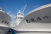Shiretoko Peninsula, Hokkaido Island, Japan<br /> Bow of white fishing boats, Utoro village harbor