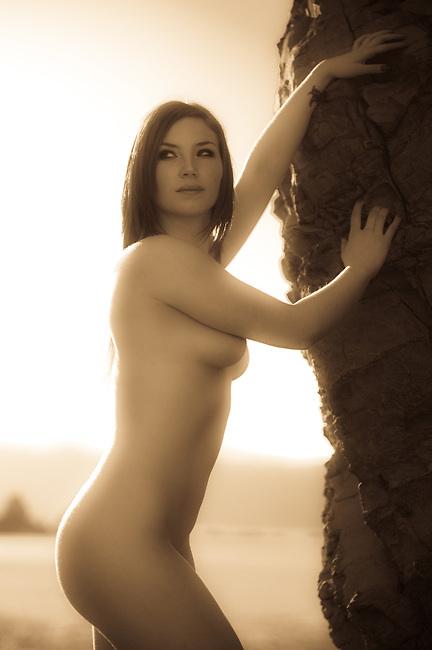 Artistic nude photos in sepia golden colour