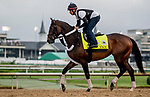 LOUISVILLE, KENTUCKY - MAY 02: Tax, trained by Danny Gargan, exercises in preparation for the Kentucky Derby at Churchill Downs in Louisville, Kentucky on May 2, 2019. Scott Serio/Eclipse Sportswire/CSM