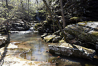 NWA Democrat-Gazette/FLIP PUTTHOFF <br /> Magnolia Falls is tucked away in a rocky chasm deep in the forest.
