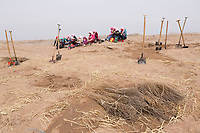 Workers take lunch break while planting seedlings of sacsaoul (foreground) in the desert area as part of an afforestation project in Minqin county of northwestern China's Gansu province, 11 March 2017. Minqin county is located in between the Tengger Desert and the Badain Jaran Desert.