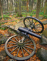 Broken artillery in forest, Stones River National Battlefield, Tennessee