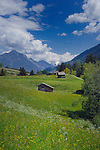 Cow shelter, properties and farm land  in the picturesque district of Imst, Tyrol,Tirol, Austria.
