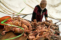A market seller prepares chickens for sale in Pingliang, Gansu, China.