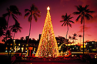 Honolulu Hale (City Hall) at Christmas with lights and palms, Oahu