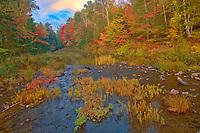 Autumn colors along George Lake<br />Killarney Provincial Park<br />Ontario<br />Canada