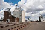 Corrugated, wooden and concrete grain elevators by the railroad tracks, Odessa, Wash.