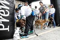 SÃO PAULO,18.05.2014 - 1º CAOMINHADA VILA PRUDENTE - Foi realizada na manhã de hoje a 1º Caominhada na Vila Prudente o passeio contou com apresentação do canil da guarda municipal de São Caetano.(Foto Ale Vianna/Brazil Photo Press).