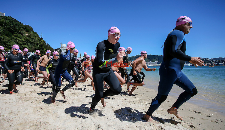 Capital Classic Ocean Swim, Wellington, New Zealand. Sunday 31 January 2016. Photo: Simon Watts/ www.bwmedia.co.nz <br /> All images &copy; Ocean Swim NZ and BWMedia.co.nz