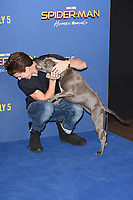 Tom Holland &amp; his dog, Tessa at the 'Spider-Man: Homecoming' photocall at The Ham Yard Hotel, London, UK. <br /> 15 June  2017<br /> Picture: Steve Vas/Featureflash/SilverHub 0208 004 5359 sales@silverhubmedia.com