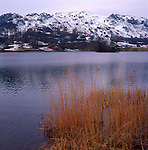 Snow on Mountains, Rydal Water with rushes in foreground, Lake District