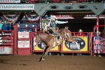 Jake Vance on Painted Joe of Stockyards Pro Rodeo during second round of the Fort Worth Stockyards Pro Rodeo event in Fort Worth, TX - 8.17.2019 Photo by Christopher Thompson