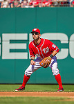 28 September 2014: Washington Nationals infielder Jeff Kobernus in action against the Miami Marlins at Nationals Park in Washington, DC. The Nationals shut out the Marlins 1-0, caping the season with the first Nationals no-hitter in modern times. The win also notched a 96 win season for the Nats: the best record in the National League. Mandatory Credit: Ed Wolfstein Photo *** RAW (NEF) Image File Available ***