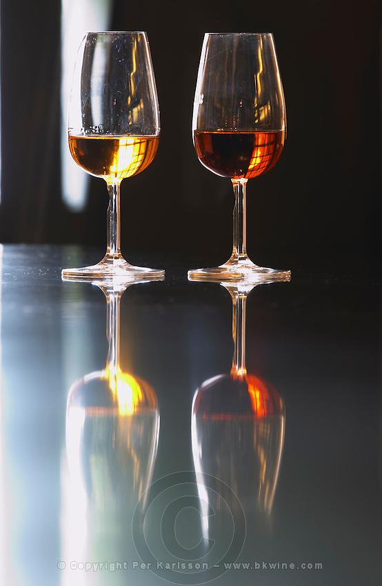 glass of white and tawny port sandeman port lodge vila nova de gaia porto portugal
