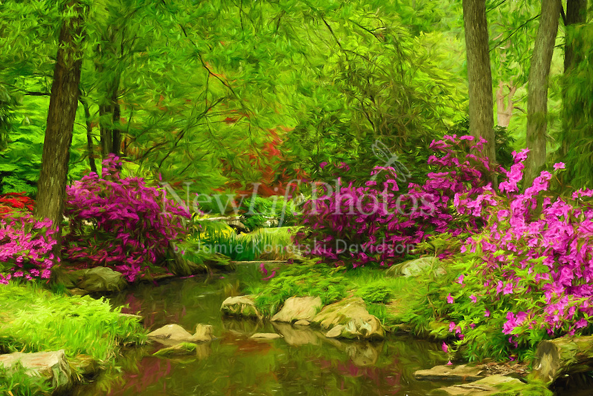 landscape of azaleas and stream at Maymont Park in Richmond, VA