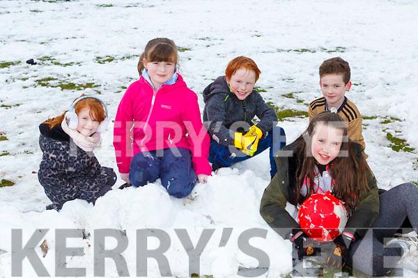 Roisin coffey, Grainne Swords, Cillian Coffey, Craig Brosnan and Ella Bartlett enjoying playing in the snow in Arbutus Grove Killarney on Saturday
