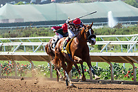 DEL MAR, CA  AUGUST 4:  #4 Tap the Wire, ridden by Drayden Van Dyke, takes the lead over #2 Luck's Royal Flush, ridden by Gary Stevens, in the stretch of the Graduation Stakes  in the stretch on August 4, 2018 at Del Mar Thoroughbred Club in Del Mar, CA. (Photo by Casey Phillips/Eclipse Sportswire/ Getty Images)