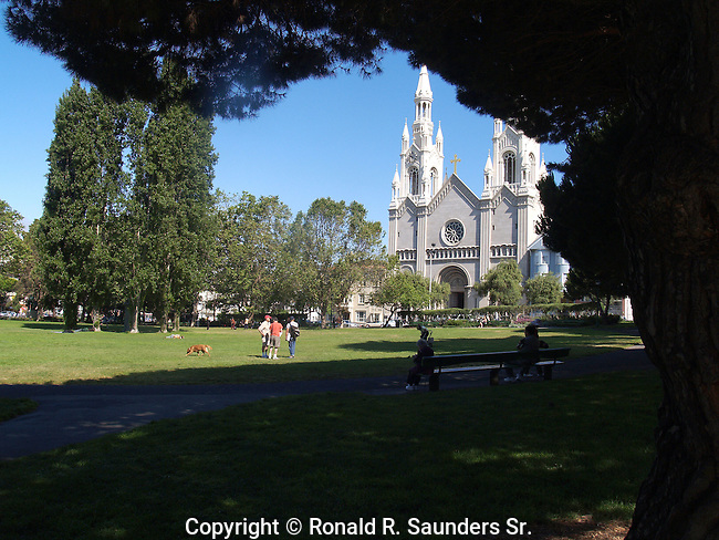 "TREES in WASHINGTON PARK FRAME the St. PETER & PAUL ROMAN CATHOLIC CHURCH. The CHURCH is OFTEN REFERRED to as ""the ITALIAN CATHEDRAL of the WEST""<br />