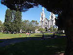 """TREES in WASHINGTON PARK FRAME the St. PETER & PAUL ROMAN CATHOLIC CHURCH. The CHURCH is OFTEN REFERRED to as """"the ITALIAN CATHEDRAL of the WEST""""<br /> <br /> Scenes from Cecil B.DeMille's  <br /> """"The Ten Commandments"""" were filmed at the church while it was under construction."""