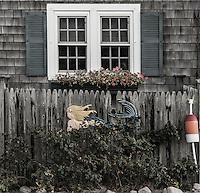 Muted detail of small Cape Cod beach house, Massachusetts, USA