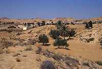 Tunisia, oasi di Tozeur.<br /> Tunisia, oasis of Tozeur