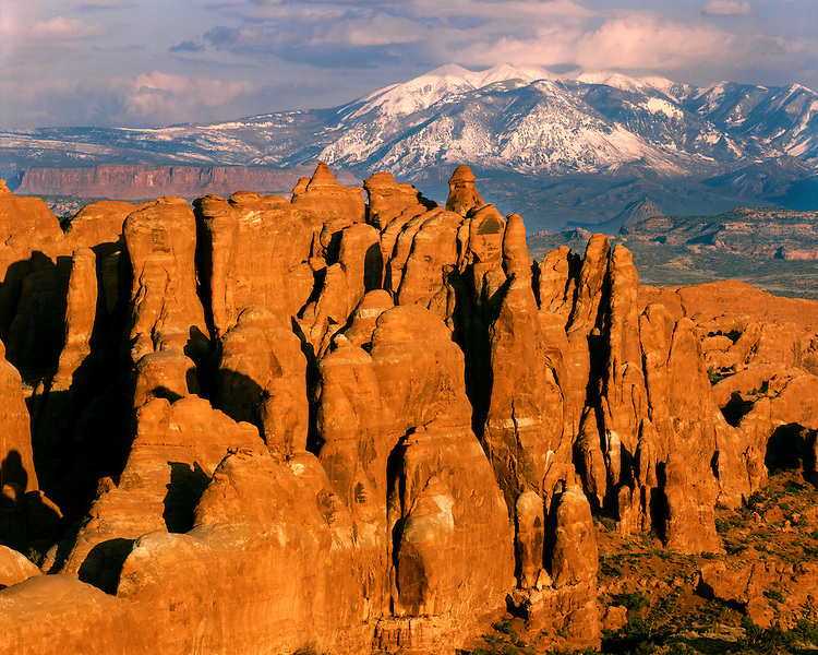 Morning light on the Devil's Garden and the La Sal Mountains; Arches National Park, UT