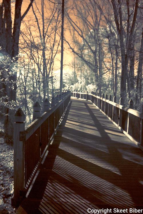Footbridge at Riverbanks Zoo to Botanical Garden