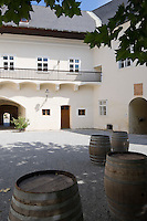 Austria, Lower Austria, Spitz at river Danube: wine growing region at UNESCO World Heritage Wachau, Castle Spitz