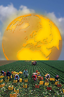 Rinascita dell'economia agricola..Rebirth of the agricultural economy......