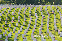 65095-02810 Gravestones at Jefferson Barracks National Cemetery St. Louis, MO