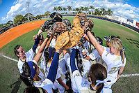 FIU Softball 2013 (Combined)