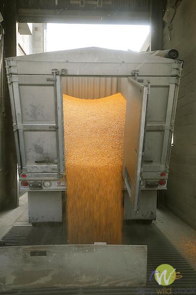 Grain Cooperative.