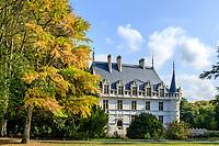 France, Indre-et-Loire (37), Azay-le-Rideau, parc et château d'Azay-le-Rideau en automne et Ginkgo biloba à gauche