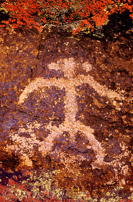 711053043 indian petroglyph or rock art carved into reddish-colored rocks in little petroglyph canyon on the china lake naval air station near ridgecrest california
