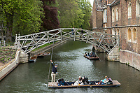 Tourists punting on the River Cam next to the Mathematical Bridge in Cambridge. Photos by Antonio Olmos