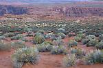 At Horseshoe Bend, Page, Arizona, AZ, USA