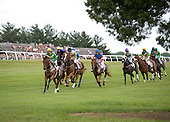 Big Bad Joe leads the field early in the 8th race timber allowance at Fair Hill.