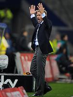 FUSSBALL   1. BUNDESLIGA   SAISON 2011/2012    10. SPIELTAG Hamburger SV - VfL Wolfsburg                                22.10.2011 Trainer Thorsten FINK (Hamburg) engagiert an der Seitenlinie