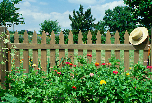 Bright zinnias and straw hat soften the wooden picket fence that protects the vegetable garden from animals,  midwest USA