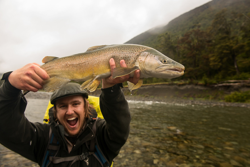 A fly fisherman raises a brown trout caught deep in the New Zealand backcountry.