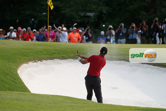 Tiger Woods (USA) hits a sand shot on the 17th hole during the final round of the 100th PGA Championship at Bellerive Country Club, St. Louis, Missouri, USA. 8/12/2018.<br /> Picture: Golffile.ie | Brian Spurlock<br /> <br /> All photo usage must carry mandatory copyright credit (© Golffile | Brian Spurlock)
