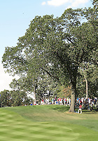 25 SEP 12  Sergios Tree in the 16th fairway at The Medinah Country Club in Medinah, Illinois.