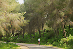 Israel, Cycling on Mount Gilboa scenic road