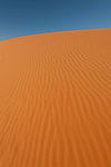 The Simpson Desert is a large area of dry, red sandy plain and dunes in Northern Territory, South Australia and Queensland in central Australia.[1][2][3] It is the fourth largest Australian desert, with an area of 176,500 km² (68,100 sq mi).