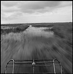 Glen's airboat speeds across the sawgrass in the Florida Everglades. . The Florida Everglades are a disappearing world. Overpopulation, the sugar and cattle industry, mismanagement of the land, droughts and bush fires are just a few of the problems the Florida Everglades are facing. Here Glen Wilsey driving his airboat. According to Glen the best thing about being a tour guide in the everglades is driving the airboats. Riding an airboat is fun but driving an airboat is an awesome feeling.