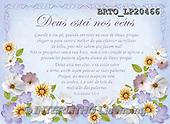 Alfredo, FLOWERS, BLUMEN, FLORES, paintings+++++,BRTOLP20466,#F# ,parchment,